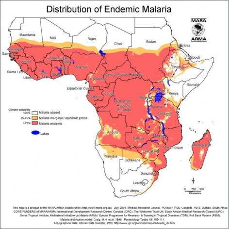 Distribution of endemic malaria