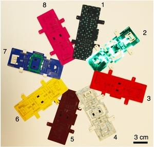 Foldscope Paper Microscope